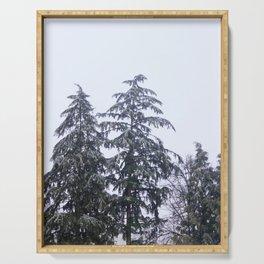 Evergreen Winter Serving Tray