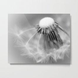 Dandelion Whispers Metal Print