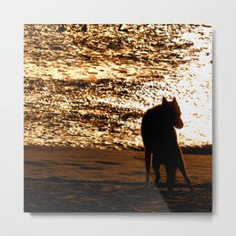 Guardian Of The Coast Metal Print