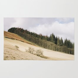 Trees on a sunlit hillside. Upper Derwent Valley, Derbyshire, UK. Rug