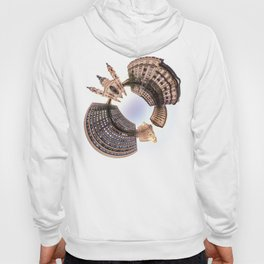 Holey planet with Basilica Hoody