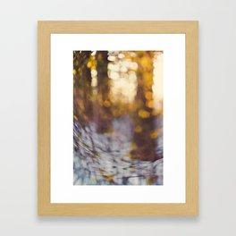 Glitter Globe Framed Art Print