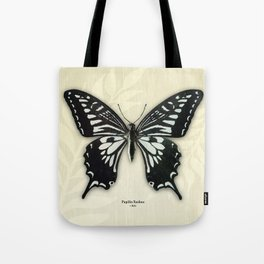 Butterfly13_Papilio Xuthus • Male Tote Bag
