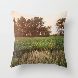 Sunsets and Corn Fields Throw Pillow
