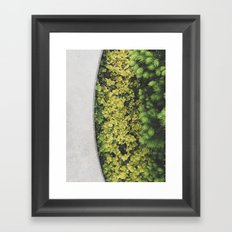 Greenly Framed Art Print