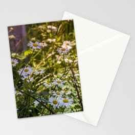Continuous Matters Stationery Cards