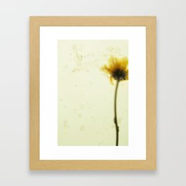 flower dance Framed Art Print