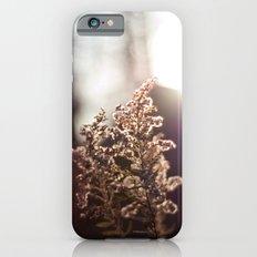 Goldenrod Light iPhone 6s Slim Case