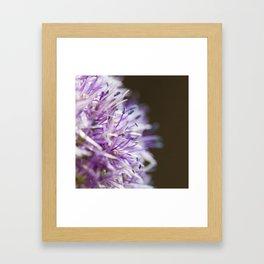 Flower Two Framed Art Print