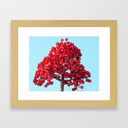 Rowan Berry Branch Top is Red on  Blue Nature Framed Art Print