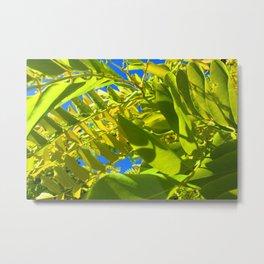 Green Leaves and Blue Sky Metal Print
