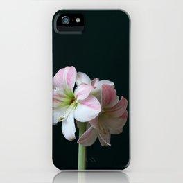 The Amaryllis iPhone Case