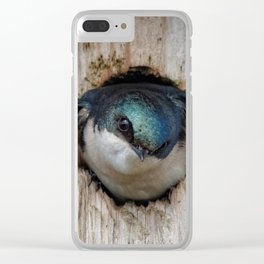 Meeting the New Nestbox Homeowner Clear iPhone Case