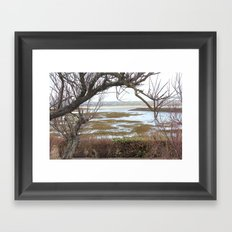 The tree before the water Framed Art Print
