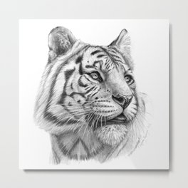 White Tiger G2011-003 Metal Print