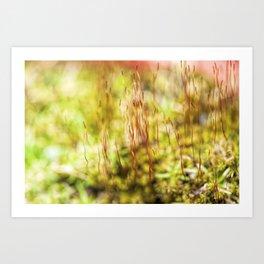 Mossy Plant Art Print