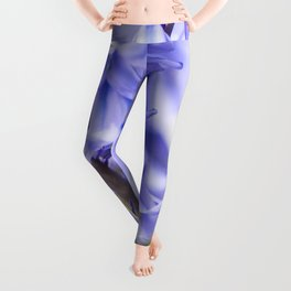 Bluebells Leggings