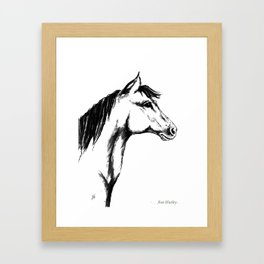 'Another Horse Profile' by Ave Hurley Framed Art Print