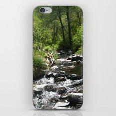 Oak Creek iPhone Skin