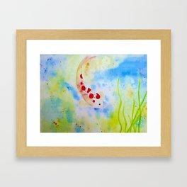 Lonely Koi Framed Art Print