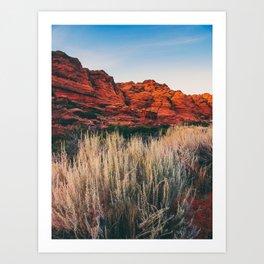 Pampas in the Desert Fine Art Print  • Travel Photography • Wall Art Art Print