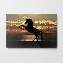 Horse Rearing At Sunset Metal Print