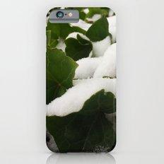 Ivy in Snow iPhone 6s Slim Case