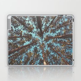 Turquoise Tree Forest Sky Laptop & iPad Skin