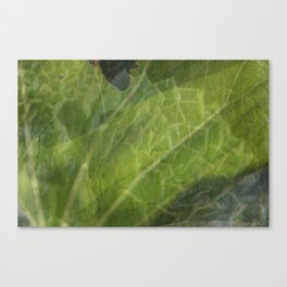 Carnival of Flowers - Green Canvas Print