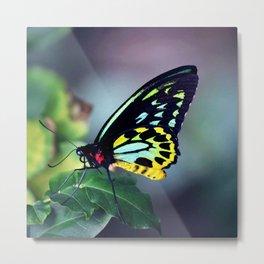 Fluorescent Birdwing Metal Print