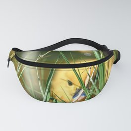 Hiding - Colorful Fanny Pack