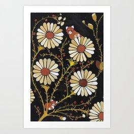 red panda daisies Art Print