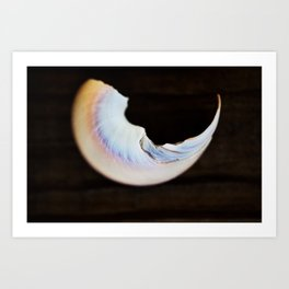 Moon Beach Art Print