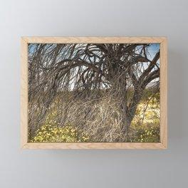 Tree Of Life 7328 Joshua Tree Framed Mini Art Print