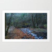river fall Art Print