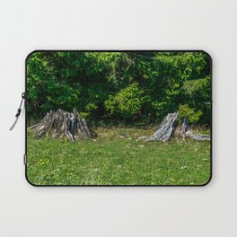 Tree Stumps on a Meadow Laptop Sleeve
