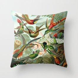 Vintage Hummingbirds Decorative Illustration Throw Pillow