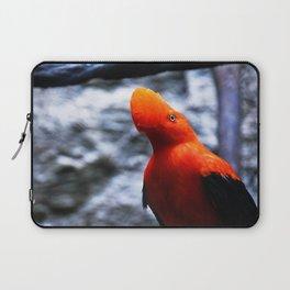 # 262 Laptop Sleeve