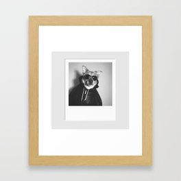 DOG SWAG Framed Art Print