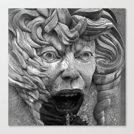Fire Face Fountain  Canvas Print