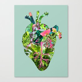 Botanical Heart Mint Canvas Print