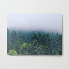 Fog over the pines Metal Print