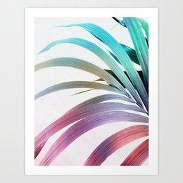 Colored Palm Leaf 2 Art Print