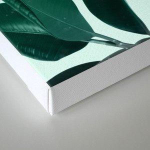 Plant Dynamics Canvas Print