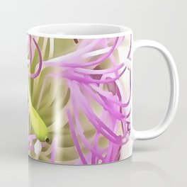 Caper Flower Blossom Coffee Mug