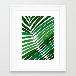 Tropical plant III Framed Art Print