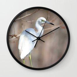 Watercolor Bird, Little Blue Heron 02, Silver River, Florida, Perch from Above Wall Clock