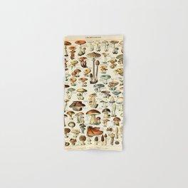 Vintage Mushroom & Fungi Chart by Adolphe Millot Hand & Bath Towel