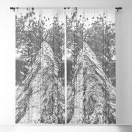 Squirrel View // Climbing Tall Tree Trunks // Winter Landscape Snowy Decor Photography Sheer Curtain