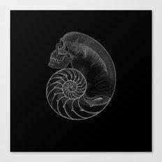 sea'sHell Canvas Print